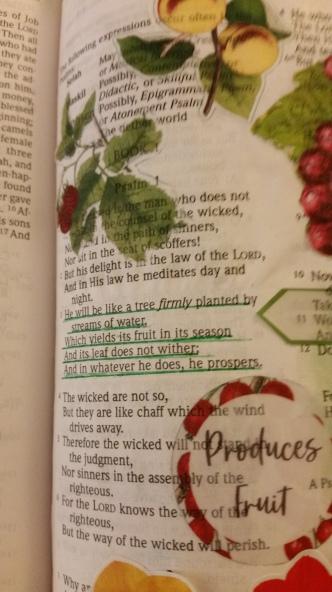 Psalm 13(2)