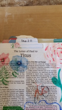 Titus 21113(3)