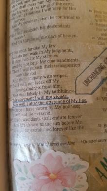 Psalm 8934(2)