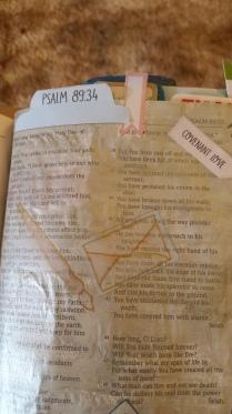 Psalm 8934(3)