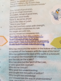 Isaiah 4011(2)