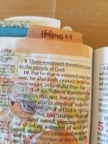 Hebrews 49(2)