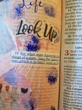 I Corinthians 211(2)