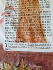 Ecclesiastes 31(2)