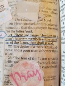 Proverbs 1921(2)