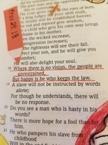 Proverbs 2918(2)