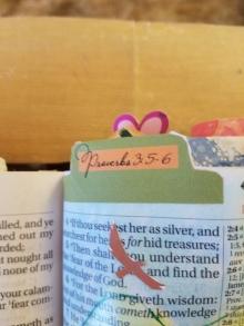 Proverbs 356(3)
